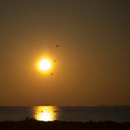 Lever de soleil-1